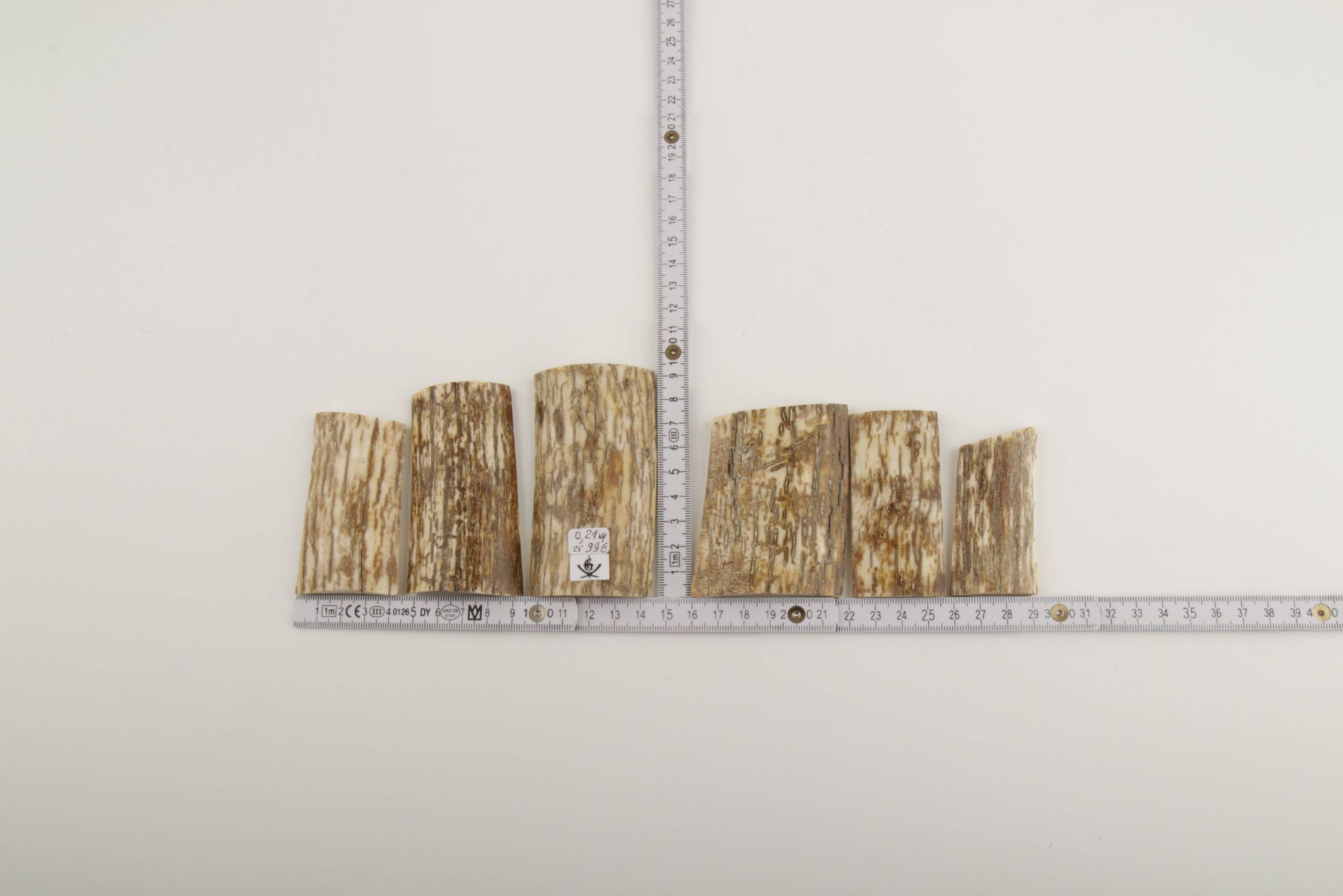 Beige-white mammoth bark