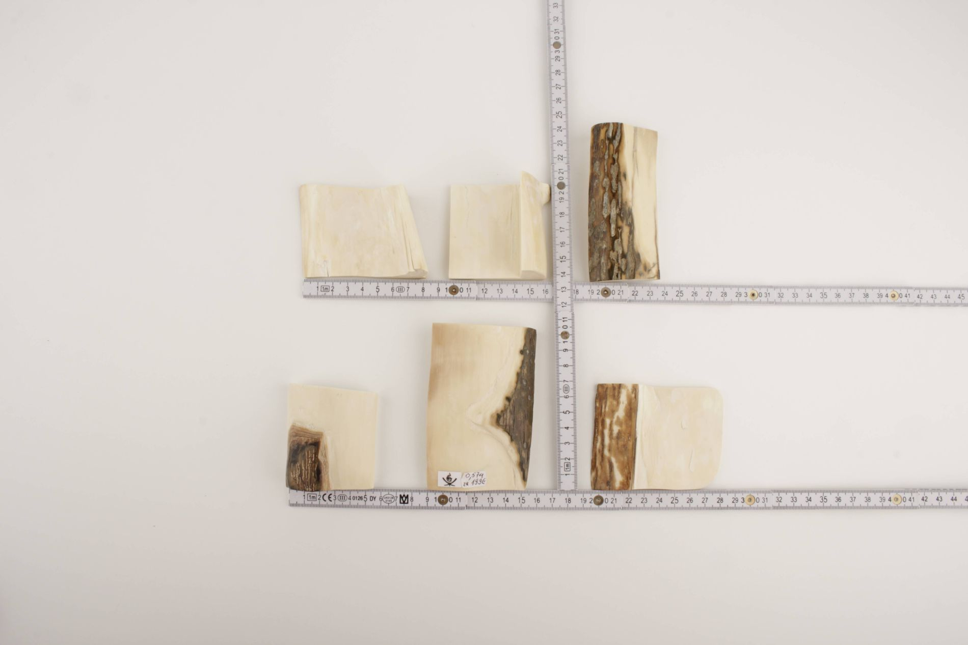 Mammoth ivory offcuts