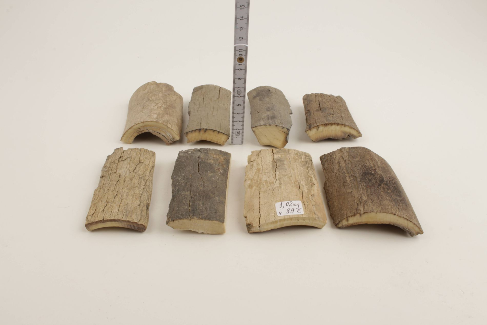 Untreated mammoth bark pieces