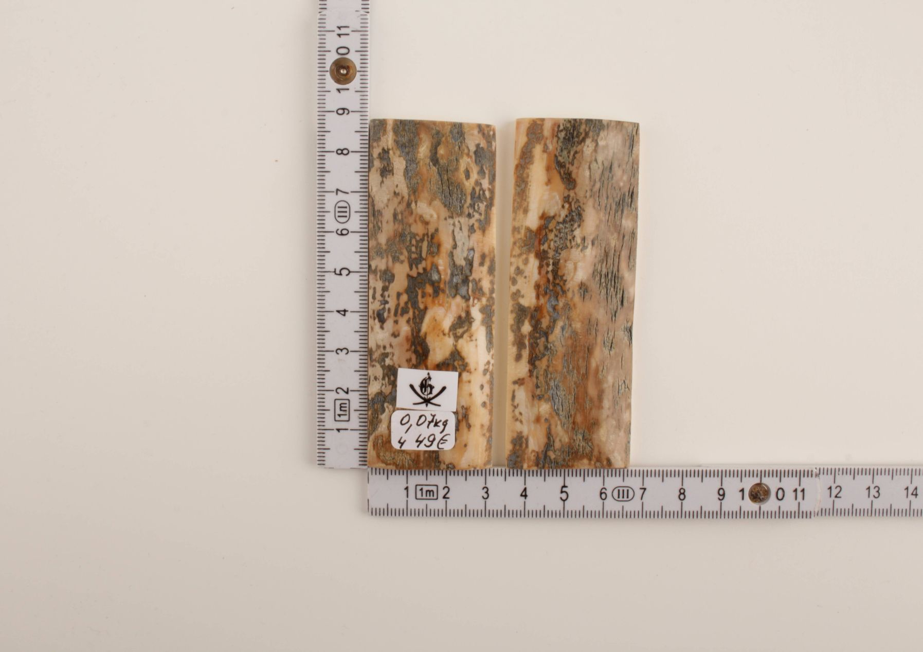 Beige-grey natural mammoth bark scales