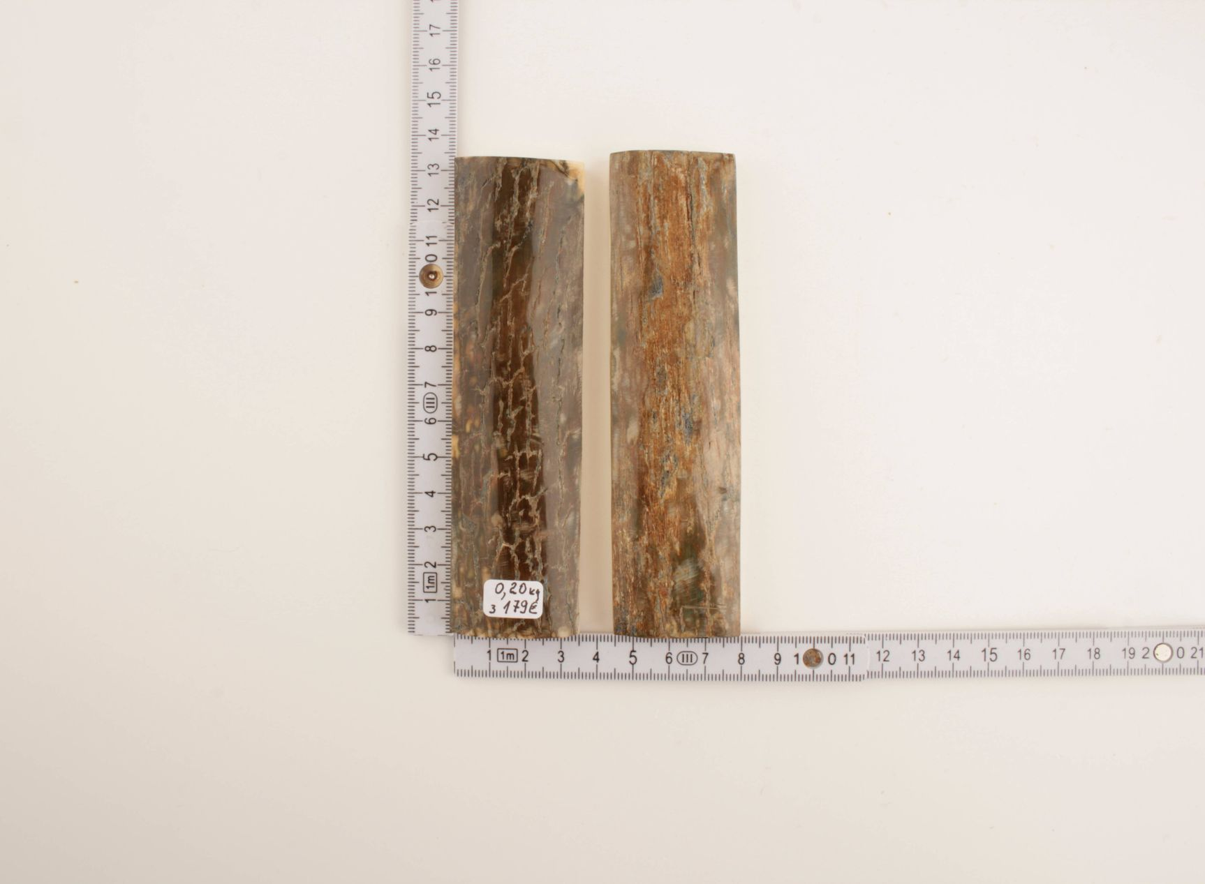 Green-beige natural mammoth bark scales