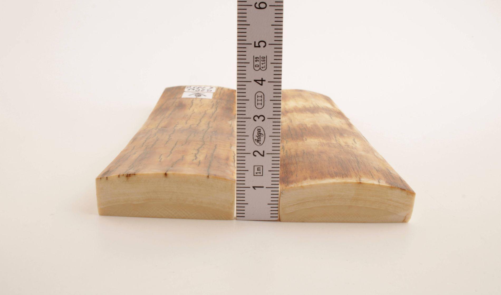 Natural mammoth bark scales