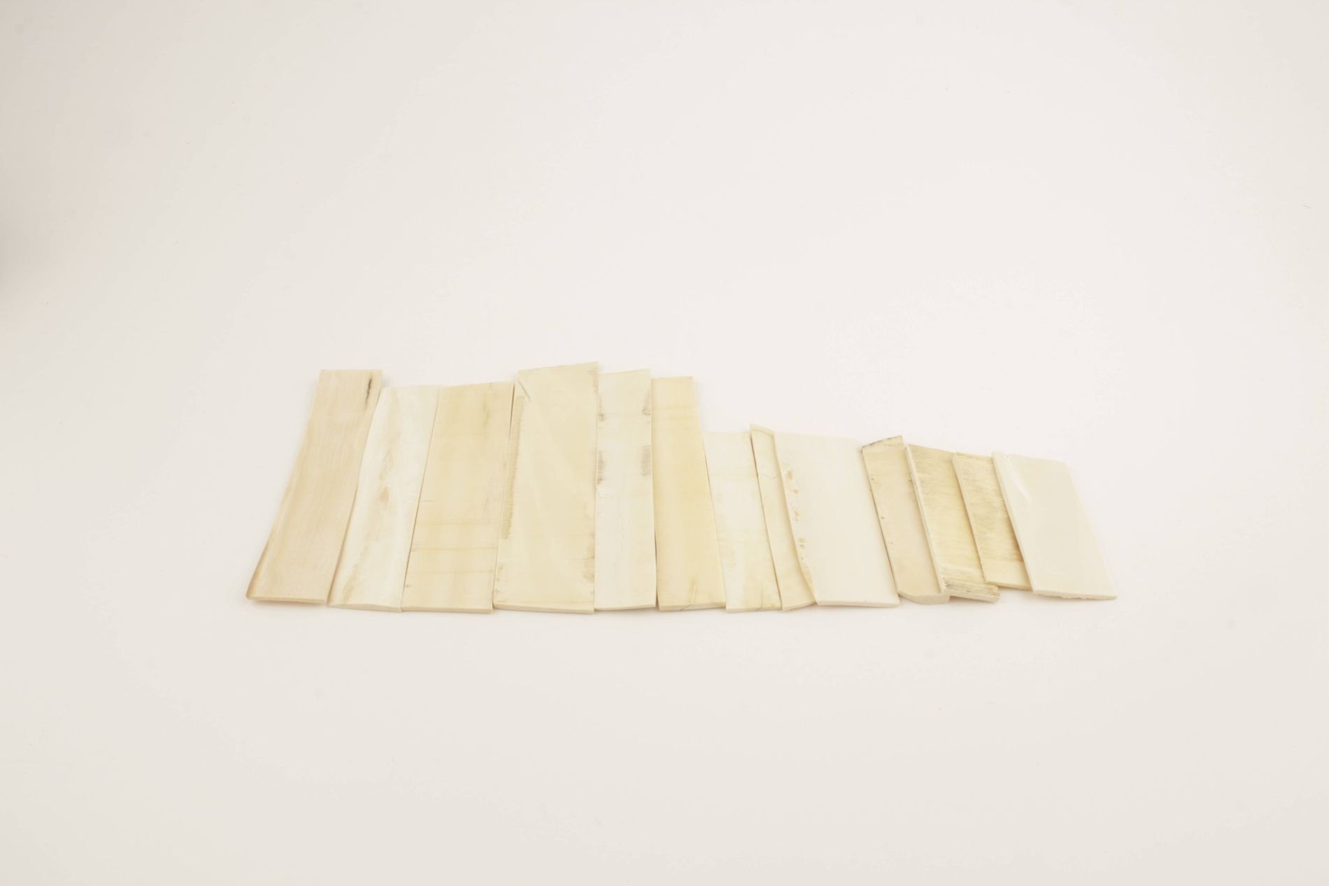 White mammoth ivory pieces