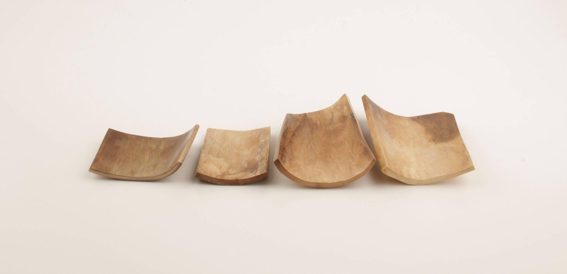 Brown-beige mammoth ivory pieces