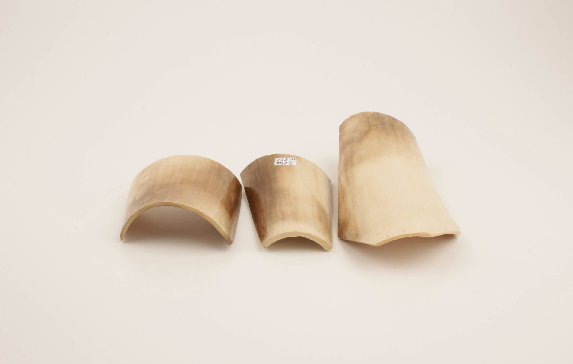 Beige-white mammoth ivory pieces