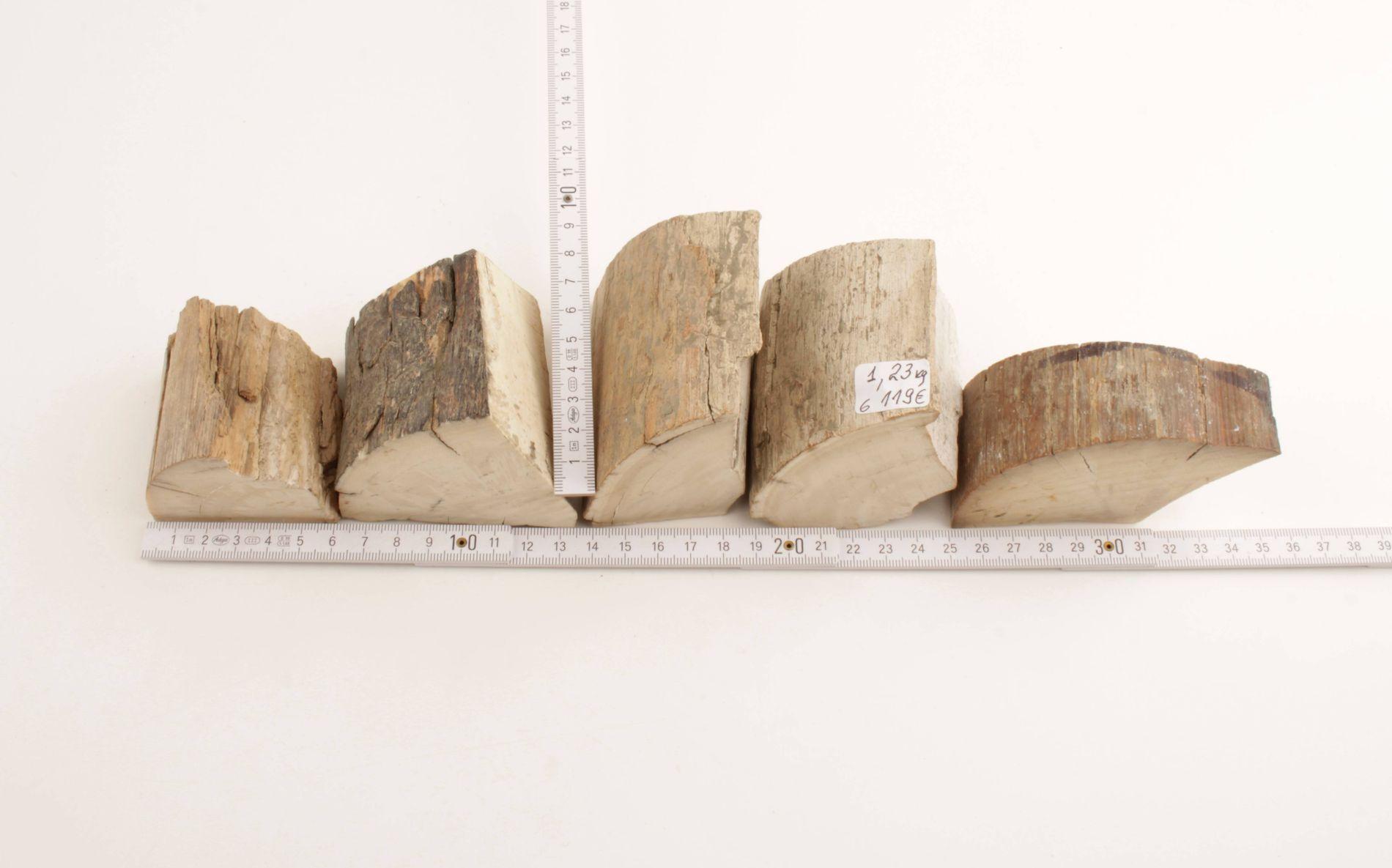 Raw mammoth ivory offcuts