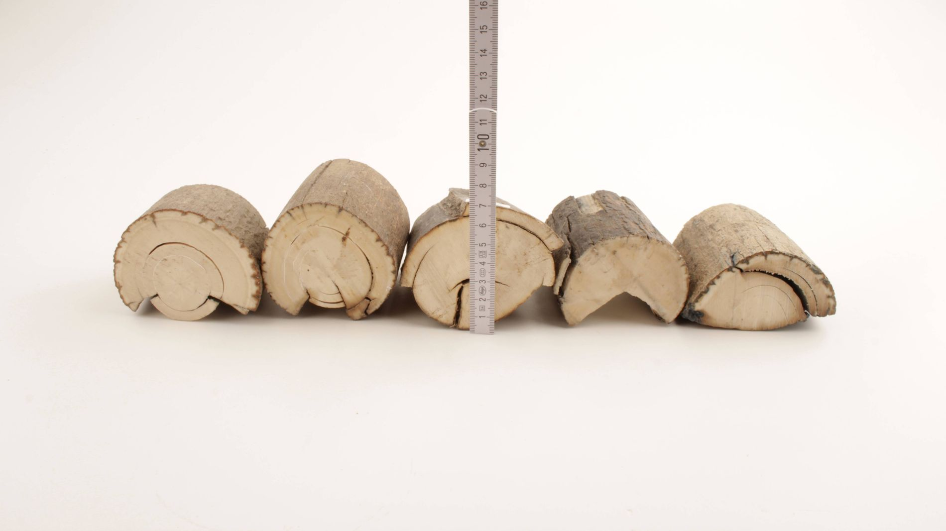 Untreated mammoth ivory offcuts