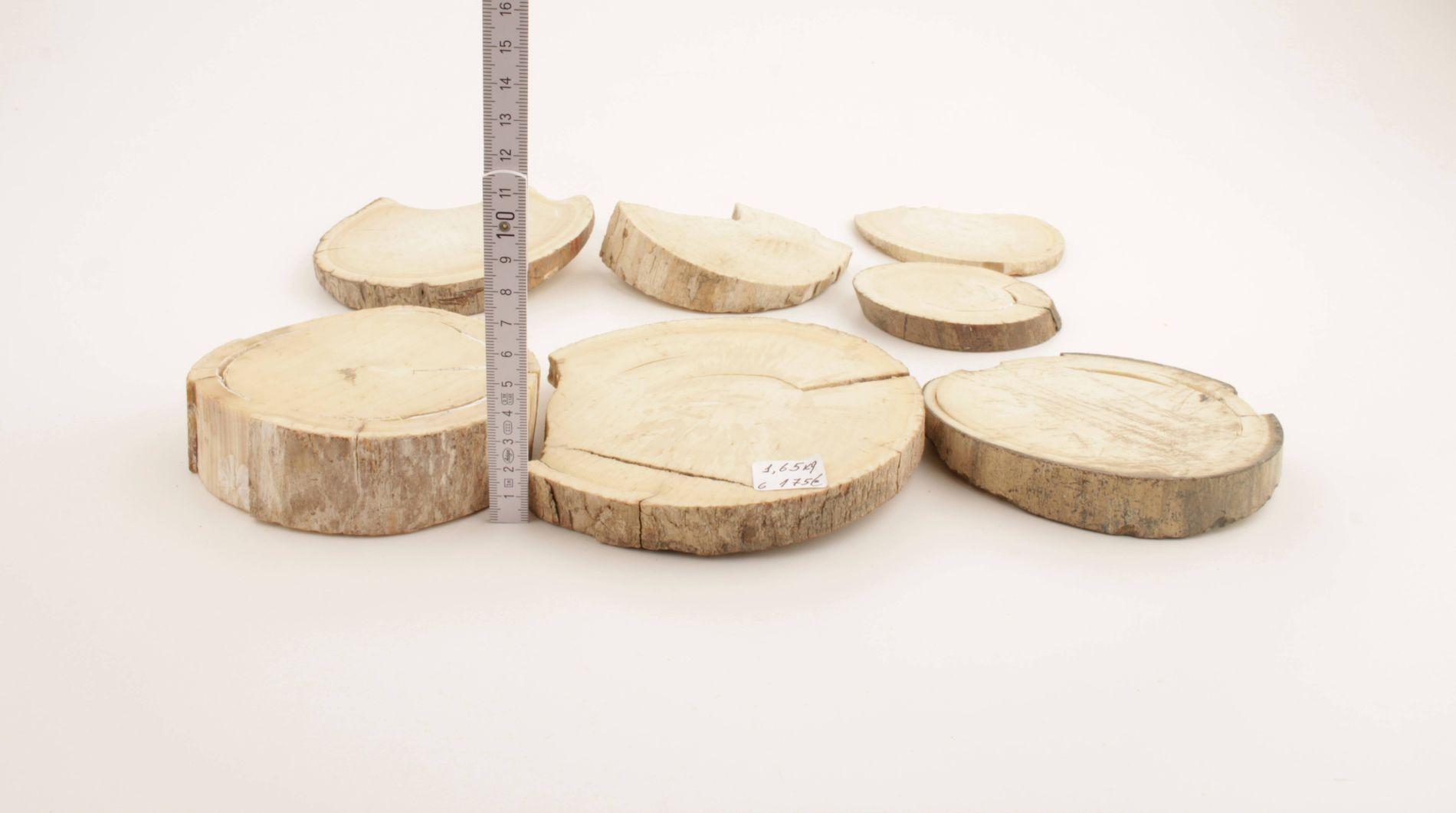 Round mammoth tusk pieces