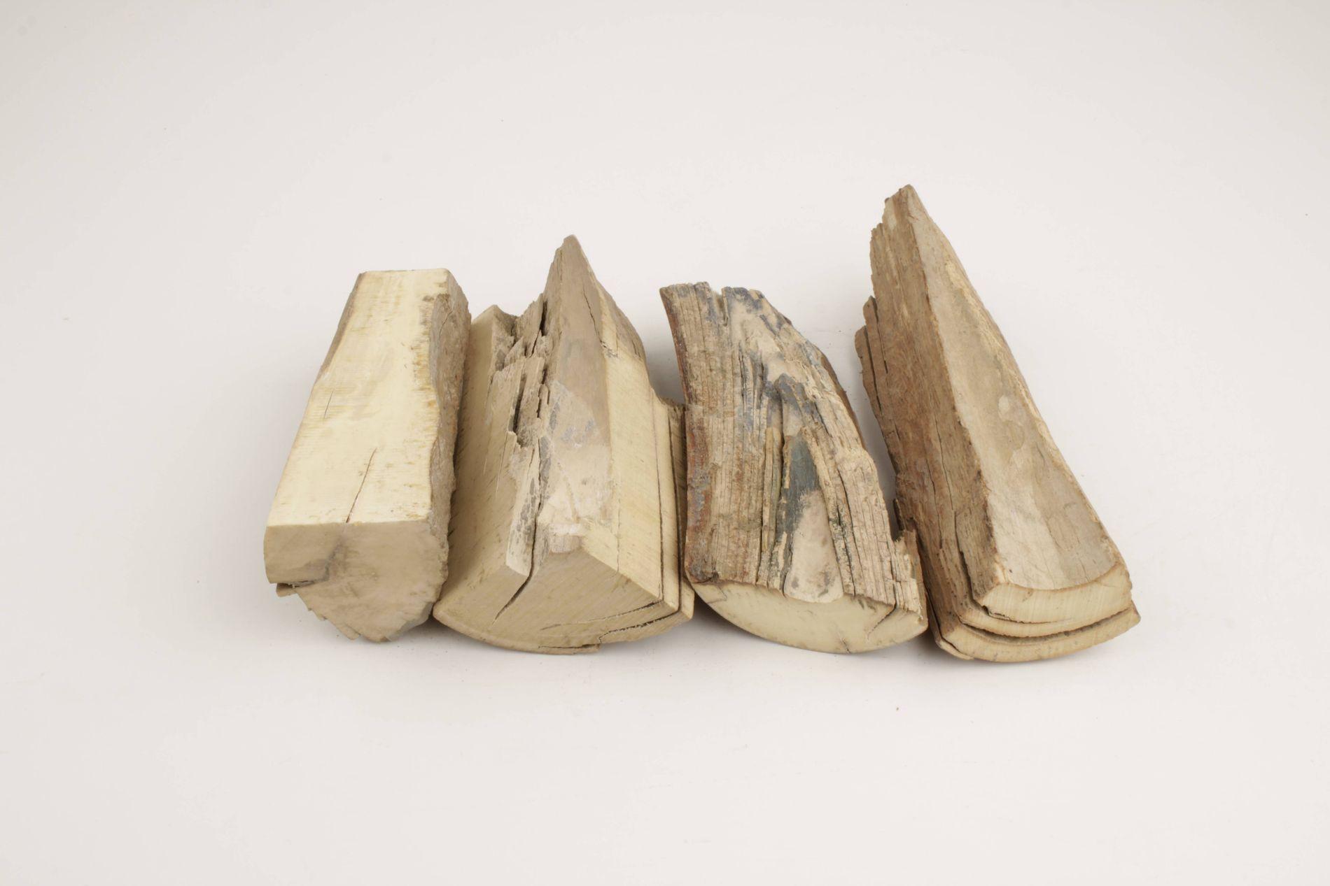 Raw mammoth ivory pieces