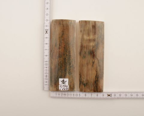 Beige-green natural mammoth bark scales
