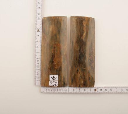 Brown-green natural mammoth bark scales