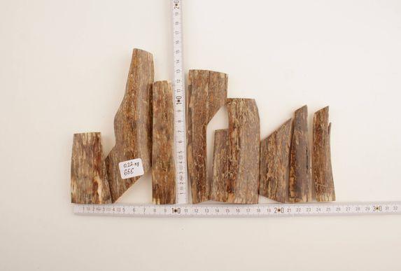 Brown mammoth bark lot