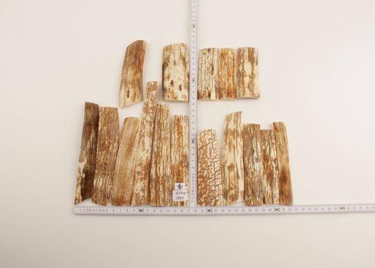 White-orange mammoth bark pieces