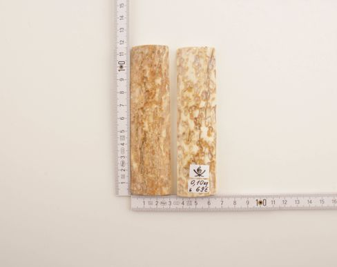 White-beige natural mammoth bark scales