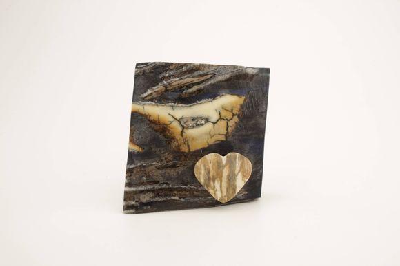 Mammoth molar piece