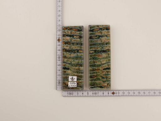 Green mammoth molar scales