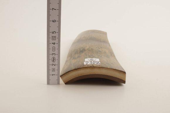 Beige-brown mammoth bark