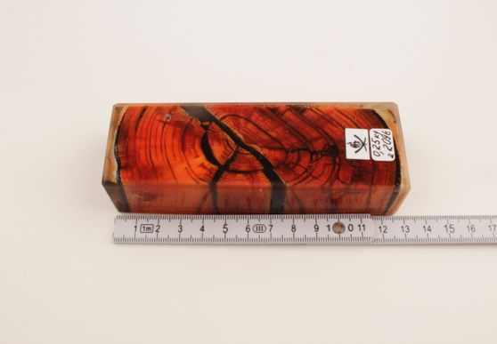 Red stabilized mammoth ivory block
