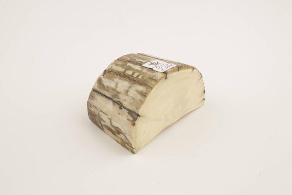 Beige-cream mammoth ivory piece