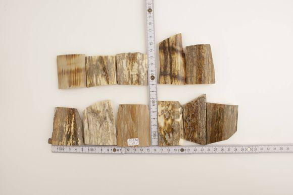 Cream-beige mammoth bark set