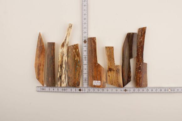 Brown-white mammoth bark lot