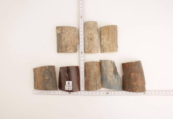 Raw woolly mammoth bark pieces