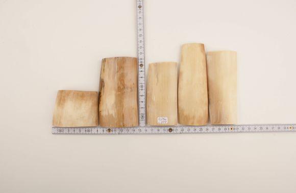 White-cream mammoth ivory pieces