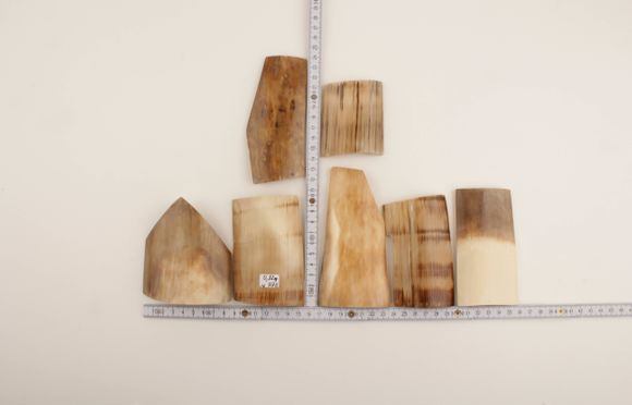 Brown-cream mammoth ivory pieces