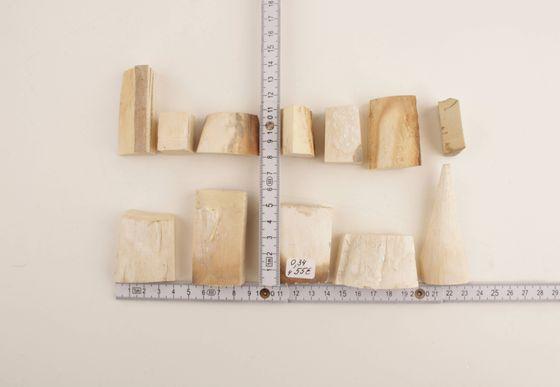 Raw white mammoth ivory offcuts