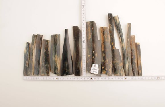 Blue-brown mammoth bark pieces