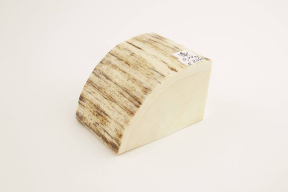 Woolly mammoth ivory slab