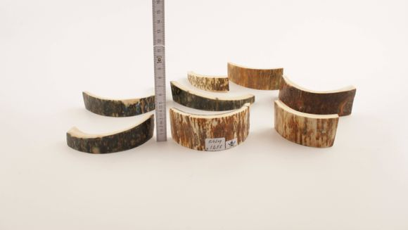 Green-brown mammoth bark pieces