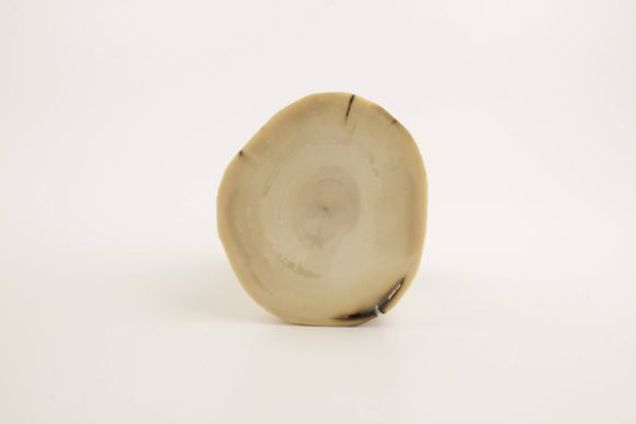 Beige-brown round mammoth ivory piece