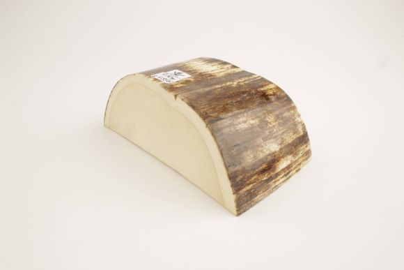 Woolly mammoth ivory piece