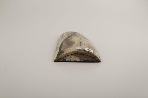 Beige-brown stabilised mammoth ivory slab