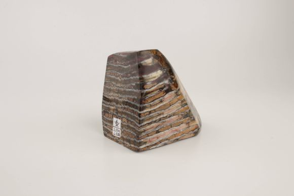 Brown-terracotta stabilized mammoth molar