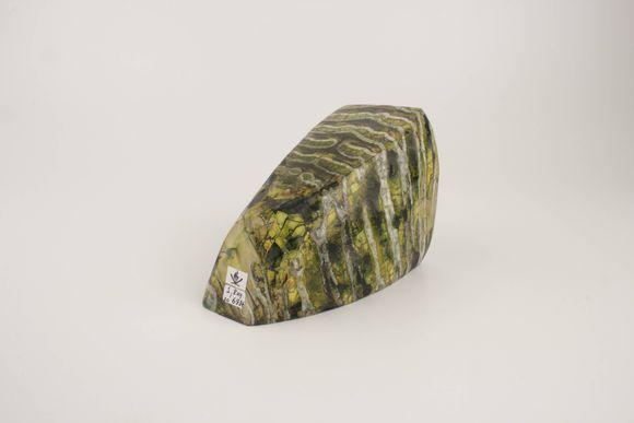 Green stabilized mammoth molar
