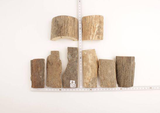 Raw woolly mammoth bark